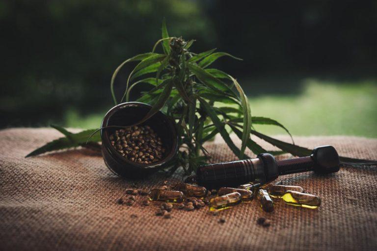 Odpowiednie warunki do uprawy marihuany